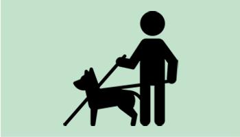 Ikon med mand og førerhund på grøn baggrund